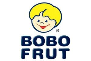 bobo-frut-logo